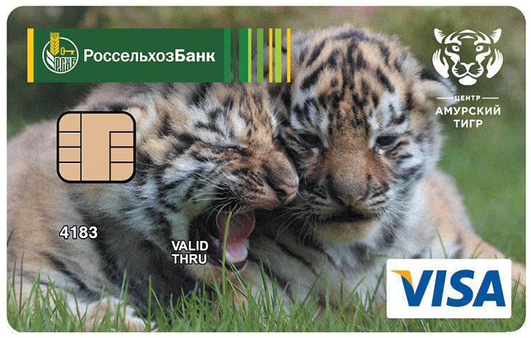 Амурский тигр карта